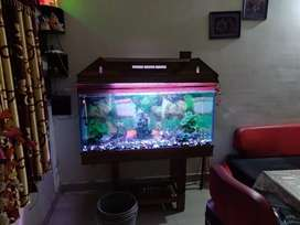 Big Aquirium with wooden top & stand, color changing lights,top filter