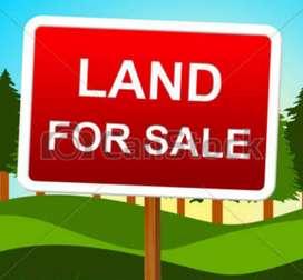 Eksoniya land 1katha 5 lecha for sale at noonmati