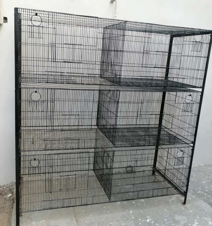 Bird cage we have 2 cages price mentioned is per cage