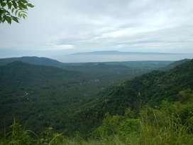 Di Jual Tanah 6 Hektar+