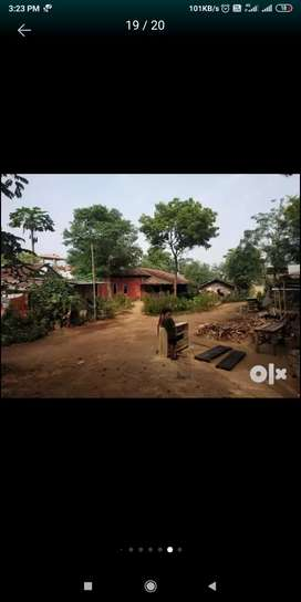 Plot of land selling Opposite to Dimapur Govt. College.