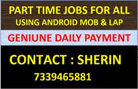 Data Entry Online Job in your Mobile/Lap with DAILY SALARY IN CHENNAI