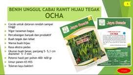 Benih Bibit Cabai Rawit Hijau Tegak Ocha Urban Farming Jayaseeds