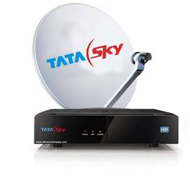 Urgent Opening in Tatasky DTH