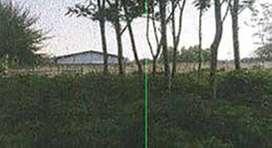 Jual Tanah Murah di Bojong Nangka Gunung Putri Bogor