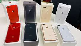 All iPhone models available at best price