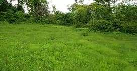 16LAKH PER ACER-MURBAD LOCATION-3ACRE CLR TITLE AGRICULTURE LAND-SALE