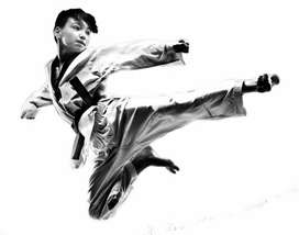 Need personal karate or any martial art teacher