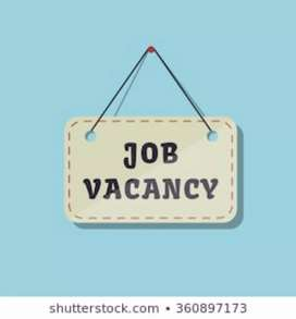 Job for fresher candidate