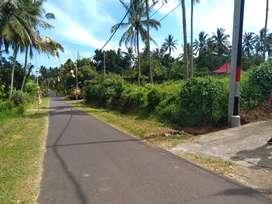 Jual tanah cocok dibangun rumah maupun tempat usaha di Tabanan bali