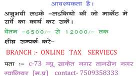 ONLINE TAX SERVICES
