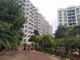 3bhk spacious flat for rent
