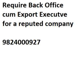 Export & Back Office Executive
