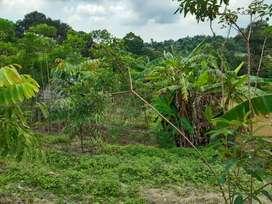 Tanah Samboja Wonotirto,Desa Karya jaya