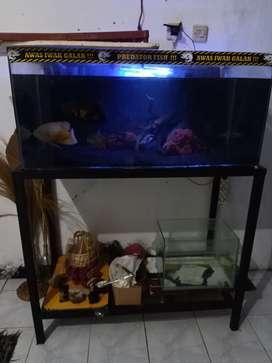 Aquarium fullsetsetset