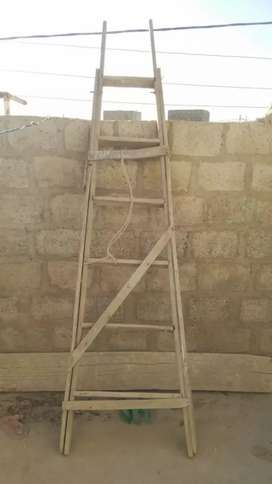 Wooden ladder,seri,ghori,