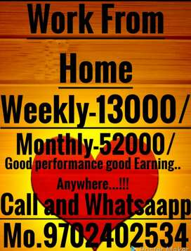 Home Job monthly income good opportunity