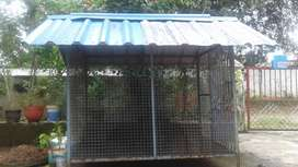 Used Dog shed for sale