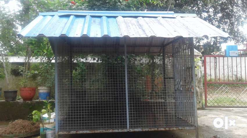 Used Dog shed for sale 0