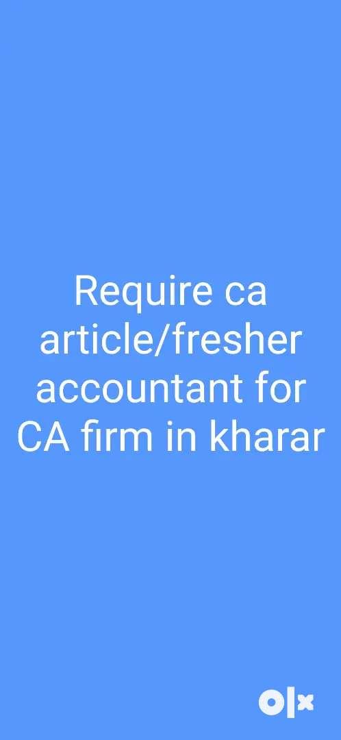 Fresher accountant/CA Article 0