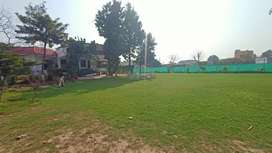 Lawn Available for Small Functions and Events