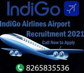 IndiGo Airlines have Vacancy for Airport Jobs, No Registration Charges