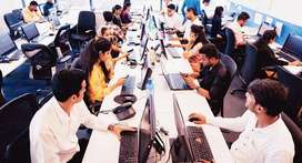 Need freshers/experienced candidates for IT company
