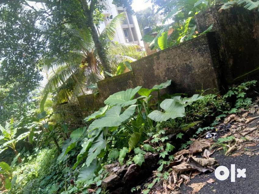 Wanted house plot at devalokam, manganam area 0