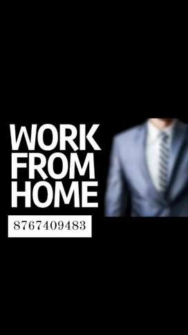 pvt ltd required urgent 185 Male fresher candidate job/homebase