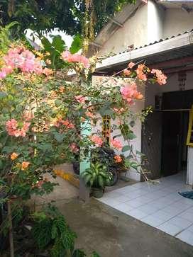 Jual rumah di daerah Citayam