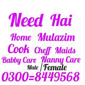 Need hai home employs just