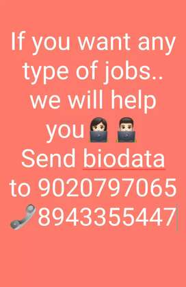 You need job? We will help you