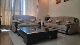 Used Imported sofa and center table