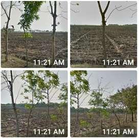 Tanah Industri Dekat Exit Tol Caruban