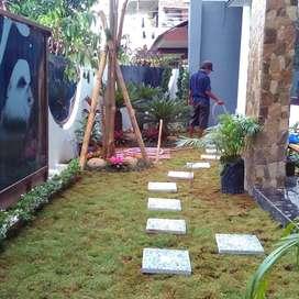 Tukang taman hijau minimalis/tebet