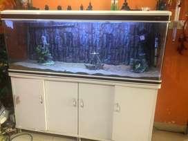 Branded Unused Aquarium system