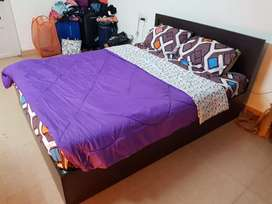 Queen Size Bed (with storage)