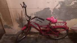 Pink cycle for