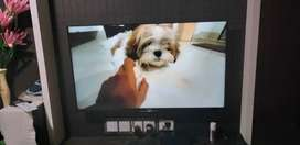 Urgent sell SONY 50inch  W80D android 3D TV