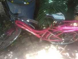 SUNBIRD bicycle
