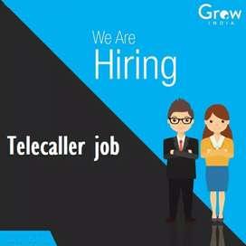Tele calling job