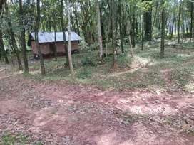 Kollam near Bharanikavu panappetty 40 cents plot for sale.
