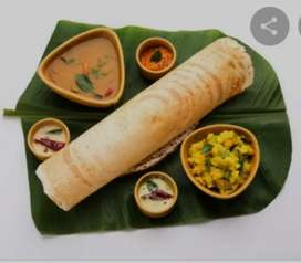 Wanted south Indian men for made south Indian food like dosa , idli ,