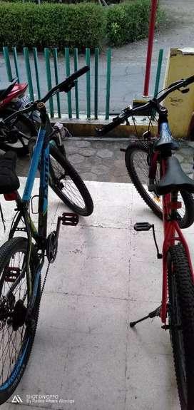 Sepeda gunung exotic dan altom beast