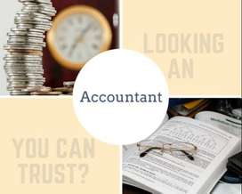 Accountant Assistant