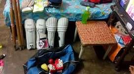 Cricket kit expet bat