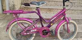 Girl Child Bicycle in Good Condition