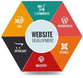 Dynamic Website Development at Rs 14,999