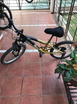 Firefox cycle