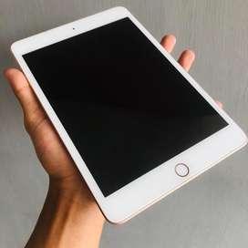 Ipad Mini 5 Wifi Only Fullset Original